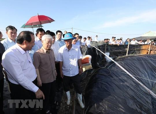 Hình ảnh Tổng Bí thư, Chủ tịch nước Nguyễn Phú Trọng làm việc ở Kiên Giang - Ảnh 1.