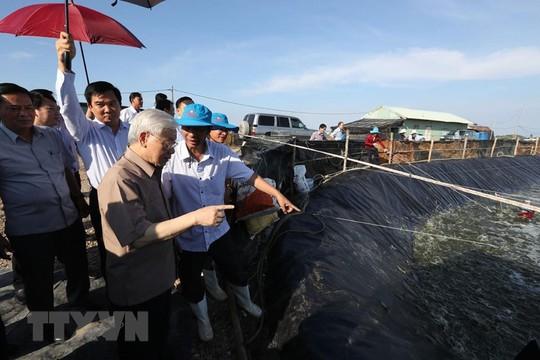 Hình ảnh Tổng Bí thư, Chủ tịch nước Nguyễn Phú Trọng làm việc ở Kiên Giang - Ảnh 3.