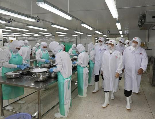 Hình ảnh Tổng Bí thư, Chủ tịch nước Nguyễn Phú Trọng làm việc ở Kiên Giang - Ảnh 5.