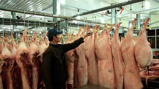Chợ đầu mối Bình Điền: Kiểm soát chặt chất lượng thịt các loại - Ảnh 1.