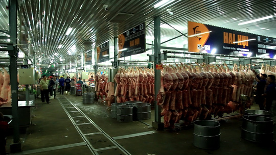 Chợ đầu mối Bình Điền: Kiểm soát chặt chất lượng thịt các loại - Ảnh 4.