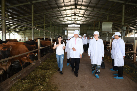 Thứ trưởng Hà Lan thăm dự án phát triển vùng chăn nuôi bò sữa tại Hà Nam - Ảnh 1.