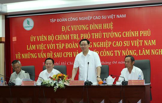 Phó Thủ tướng nhắc Tập đoàn cao su