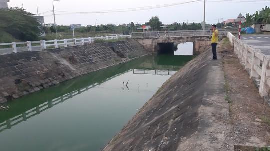 Đà Nẵng: Gần 2 km kênh đổi màu bất thường, kèm hiện tượng cá chết - Ảnh 3.