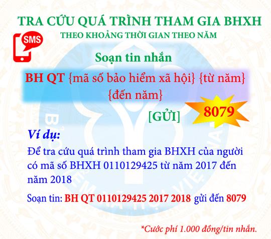 Tra cứu đóng, hưởng BHXH, BHYT bằng tin nhắn điện thoại - Ảnh 2.