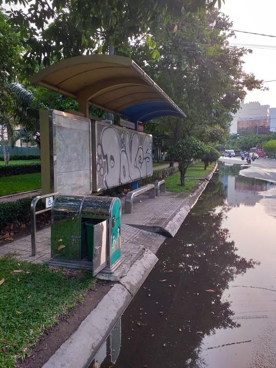 Ao, hồ giữa đường - ảnh 1