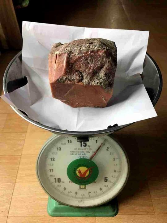 Tảng báu vật của biển chỉ nặng 1,5kg nhưng trị giá hàng tỉ ở Ninh Bình - Ảnh 4.
