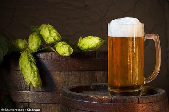 Xác định chất tiêu diệt ung thư gan, ruột trong… bia - Ảnh 1.