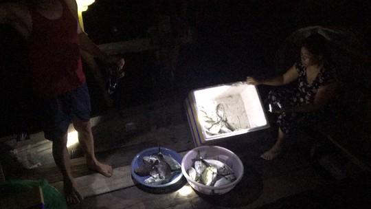 Cá chết, dân nghi do cơ sở sản xuất nước đá xả khí gas - Ảnh 1.