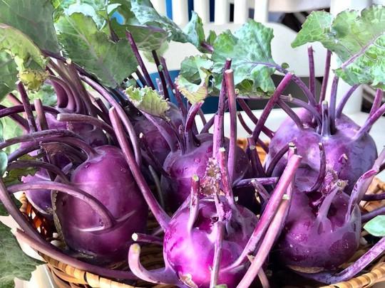 Gia đình ở TP HCM bị nhầm là trồng rau đột biến vì quá tốt - Ảnh 5.