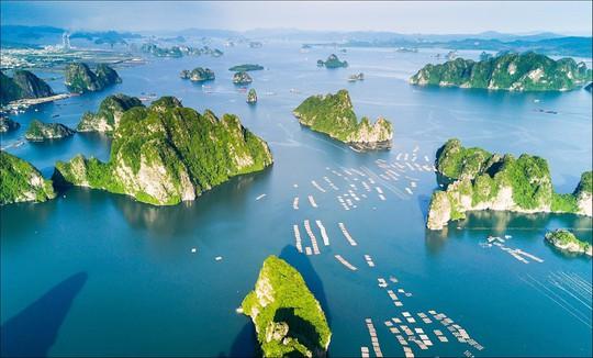 Bay Hải Phòng – Cần Thơ chỉ từ 200.000 VND cùng Bamboo Airways - Ảnh 2.