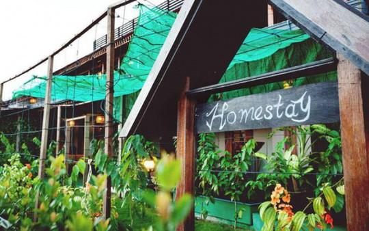 Homestay – Kênh đầu tư mới - Ảnh 1.