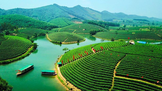 Saigontourist hợp tác chiến lược với tỉnh Nghệ An - Ảnh 2.