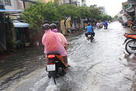 Sau cơn mưa trắng trời, CSGT Bạc Liêu giúp dân di chuyển trong biển nước  - Ảnh 1.