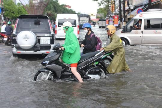 Sau cơn mưa trắng trời, CSGT Bạc Liêu giúp dân di chuyển trong biển nước  - Ảnh 13.