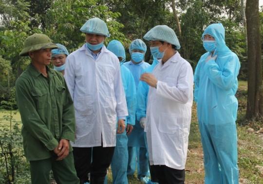 Chủ tịch Thanh Hóa yêu cầu kiểm điểm 1 phó chủ tịch huyện lơ là chống dịch tả heo châu Phi - Ảnh 1.