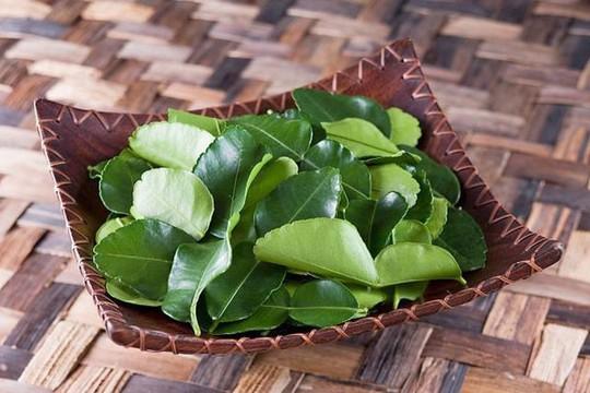 Lá chanh ở Việt Nam sang châu Âu bán 6,3 triệu đồng/kg - Ảnh 2.
