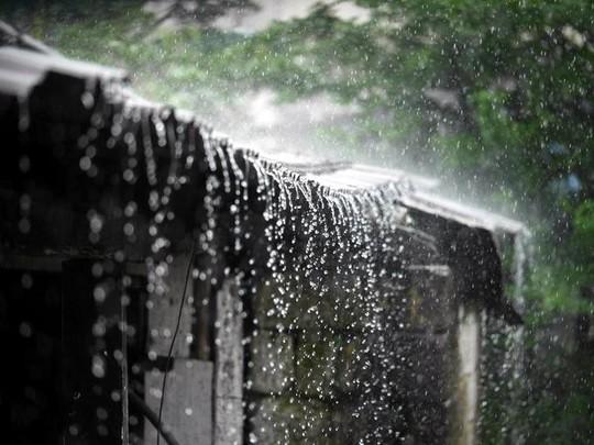 Cuộc sống ở nơi mưa nhiều nhất thế giới - Ảnh 3.