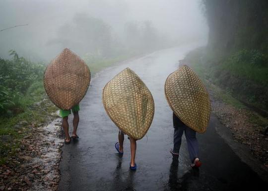 Cuộc sống ở nơi mưa nhiều nhất thế giới - Ảnh 5.