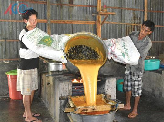 Trèo cây lấy nước trên trời nấu thành đặc sản ở An Giang - Ảnh 2.