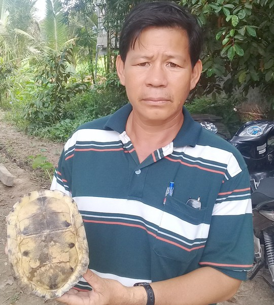 Hết rắn và trăn khủng, người dân An Giang lại phát hiện rùa lạ hiếm - Ảnh 2.