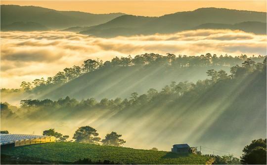 Những điểm ngắm sương vờn mây lúc bình minh ở Đà Lạt - Ảnh 3.