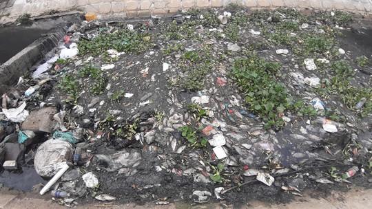 Cá chết trắng gây ô nhiễm tại Khe Cạn, người dân đóng cửa cả ngày lẫn đêm - Ảnh 2.