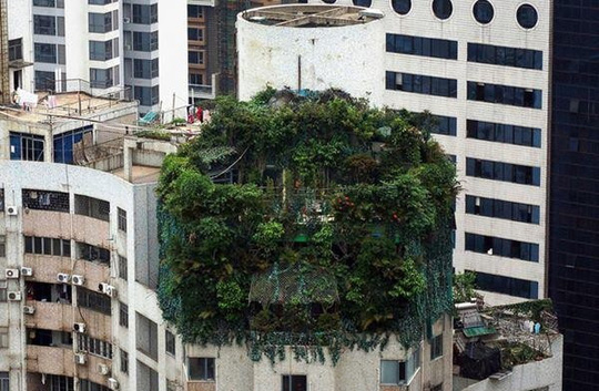 Những căn nhà siêu dị trên thế giới, vượt xa trí tưởng tượng - Ảnh 4.