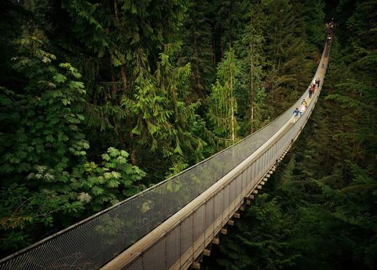 10 cây cầu treo khách vừa ngắm cảnh vừa run chân - Ảnh 8.