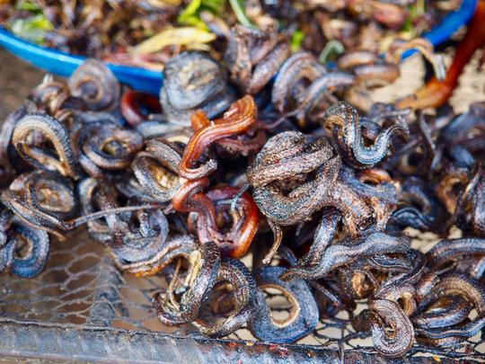 Nhện độc chiên và 4 món khiến bạn rùng mình ở Campuchia - Ảnh 7.