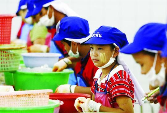 Phát động thi viết về phòng ngừa lao động trẻ em - Ảnh 1.