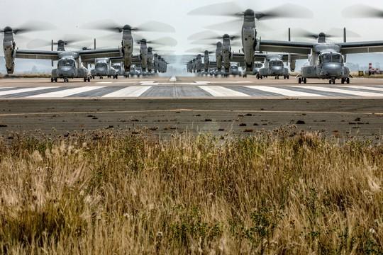 """Trực thăng quân sự Mỹ phô diễn sức mạnh trong tập trận """"Voi đi bộ"""" - ảnh 5"""