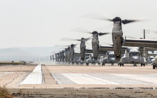 """Trực thăng quân sự Mỹ phô diễn sức mạnh trong tập trận """"Voi đi bộ"""" - ảnh 4"""