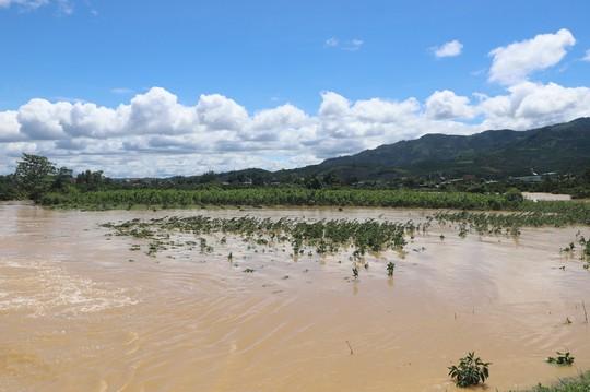 Lũ quét kinh hoàng tại TP Bảo Lộc, tỉnh Lâm Đồng - Ảnh 4.