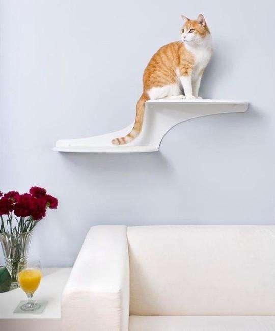 Ngôi nhà sành điệu dành cho những chú mèo - Ảnh 1.