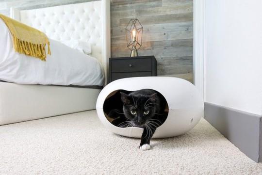 Ngôi nhà sành điệu dành cho những chú mèo - Ảnh 10.