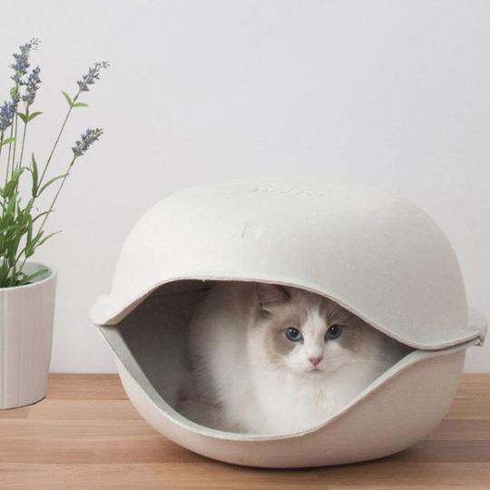 Ngôi nhà sành điệu dành cho những chú mèo - Ảnh 11.