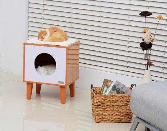 Ngôi nhà sành điệu dành cho những chú mèo - Ảnh 12.