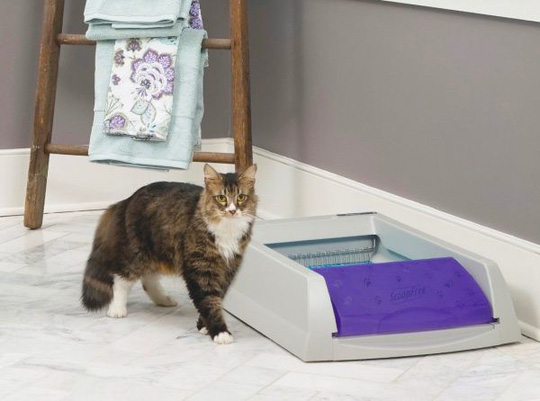 Ngôi nhà sành điệu dành cho những chú mèo - Ảnh 15.