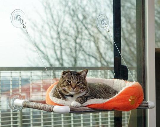 Ngôi nhà sành điệu dành cho những chú mèo - Ảnh 4.
