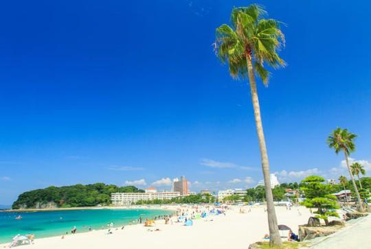 Wakayama nồng nàn hương vị biển cả - Ảnh 3.