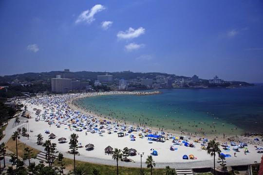 Wakayama nồng nàn hương vị biển cả - Ảnh 4.