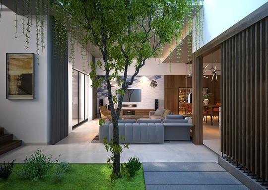 Nhà ở như công viên nhờ có vườn cây bên trong - Ảnh 3.