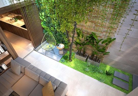 Nhà ở như công viên nhờ có vườn cây bên trong - Ảnh 4.