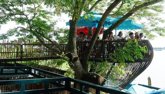 Quán cà phê cho khách ngồi trên cây ở Cần Thơ - Ảnh 1.