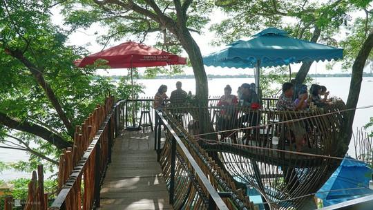 Quán cà phê cho khách ngồi trên cây ở Cần Thơ - Ảnh 2.
