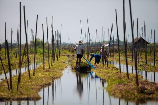 Những ngôi làng nổi trên mặt nước ở Myanmar - Ảnh 10.