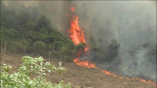 Đang cháy rừng ở Quảng Bình, hàng trăm cán bộ được huy động dập lửa - Ảnh 1.