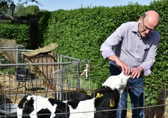 Nông trại của nông dân Cô Gái Hà Lan: Diện tích mỗi nông trại bằng 140 sân vận động - Ảnh 1.