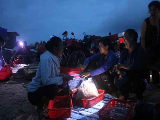 Mực, tôm, cá kéo về biển Cồn Gò lúc nửa đêm - Ảnh 1.